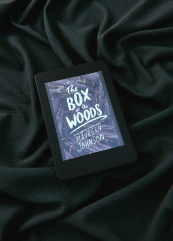 the box in the woods - maureen johnson